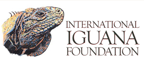 Donate to Iguana Foundation!